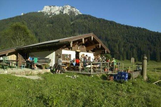 Traunbachhäusl: Almen Ruhpolding