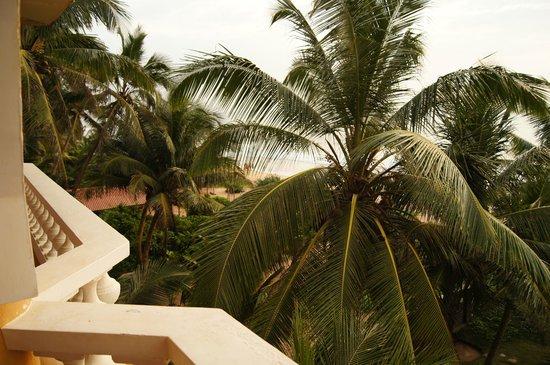 Royal Beach Resort:                   Балкон