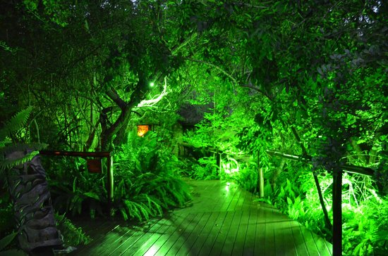 Maqueda Lodge:                   Entrance at night