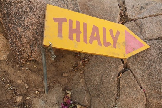 Campement de Thialy: The Place and jou can walk around the Island