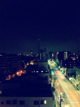 Palace Japan:                   View from the hotel roof
