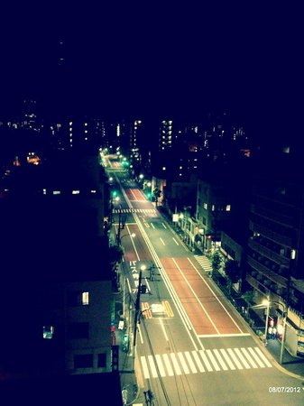 Palace Japan :                   View from the hotel roof