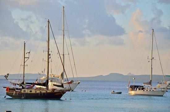 Bamboo Bali Bonaire Resort: bonaire harbour