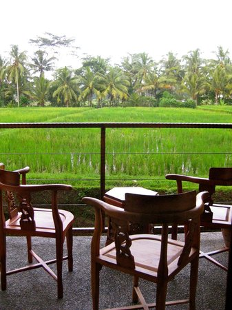 Junjungan Ubud Hotel and Spa: At night - fireflies!