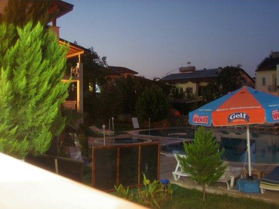 Tayfun Apartments :                   pool at night