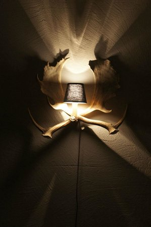 Arena Lodge: Wandlampe