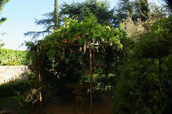 B&B Villa Aurora: Giardino