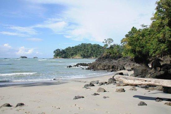 Manu Yoga Retreats: Der Strand in Manuel Antonio (ca 30Minuten Autofahrt)