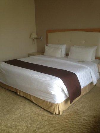 โรงแรมเดอะรอแยล บินตัง: camera spaziosa