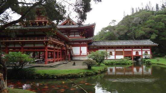Byodo-In Temple: l'arrière du temple
