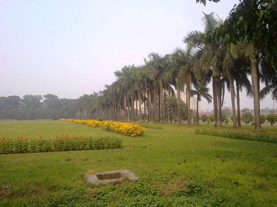 National Parliament House: Parliament Garden