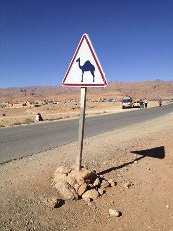 Marrakech Expedition:                   .