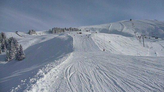 Villars-Gryon Ski Center: Pistes Villars