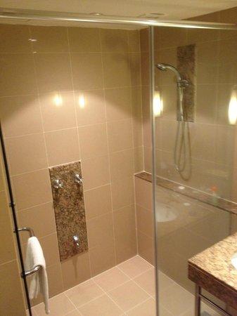 Capitol Hotel: Dusche