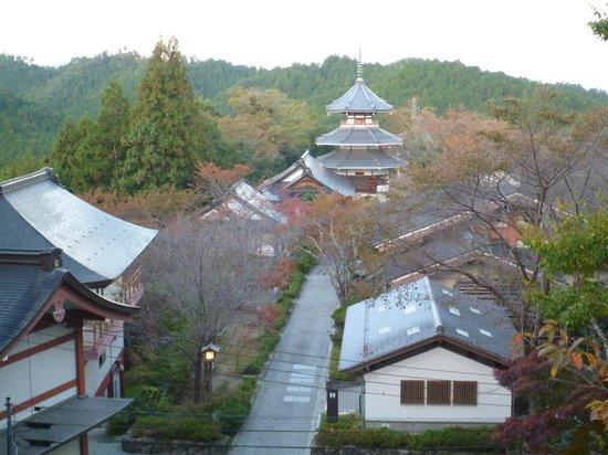 Kinpusenji Temple :                   Kinpusenji