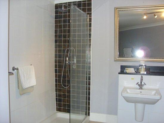 Warner Leisure Hotels Nidd Hall Hotel: The shower, room 20