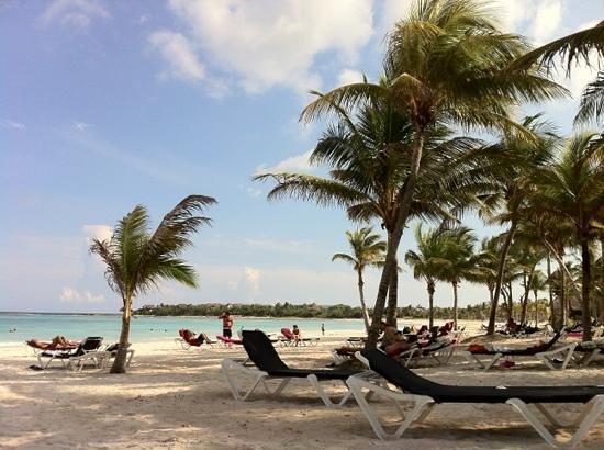 Hotel Barcelo Maya Beach: maya beach