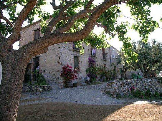 Condofuri, Italia: cortile agriturismo il bergamotto
