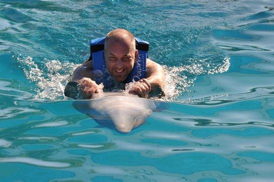 Dolphin Discovery Puerto Vallarta:                   Poseidon