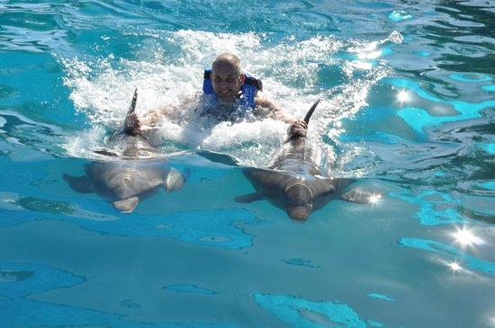 Dolphin Discovery Puerto Vallarta:                   Poseidon & Friend