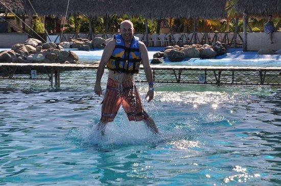 Dolphin Discovery Puerto Vallarta:                   Nice!!