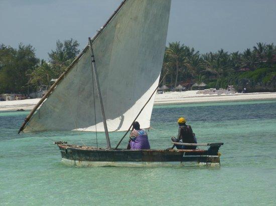 Jacaranda Beach Resort: ...la vita e tutto un equilibrio sopra la follia...