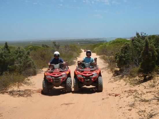 Kalbarri Quadbike Safaris: Not really racing!