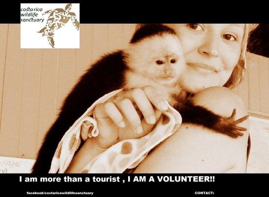 Costa Rica Wildlife Sanctuary: getlstd_property_photo