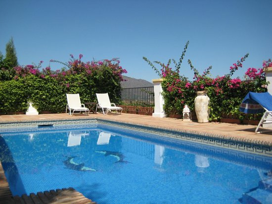 Casa El Aguila: The pool