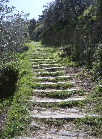 Hotel Il Saraceno : Upward bound