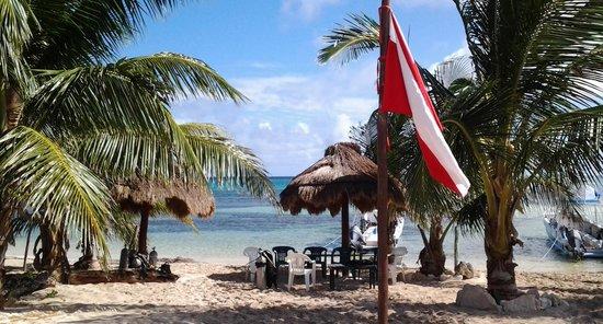 Hotel Los Arrecifes Costa Maya: Dive shop, dreamtimediving.com right next door