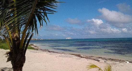 Hotel Los Arrecifes Costa Maya: You can see cruise ships always in the distance