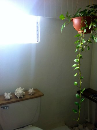 Float Utila: Cute Bathroom