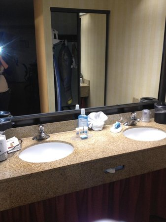 BEST WESTERN PLUS Raffles Inn & Suites:                   nice and updated