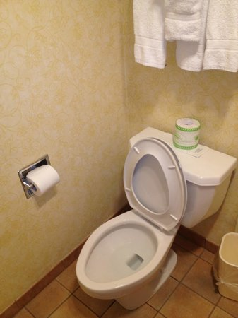 BEST WESTERN PLUS Raffles Inn & Suites:                   clean bathroom