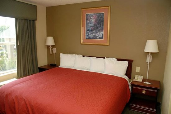 Country Inn & Suites By Carlson, McDonough: King Standard