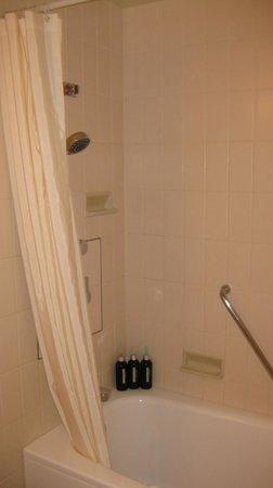 ANA Crowne Plaza Hotel Narita: Bathroom