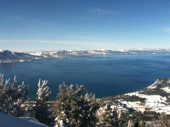 Alder Inn : Lake Tahoe