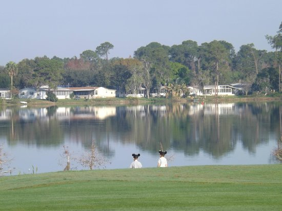 Holiday Inn Club Vacations At Orange Lake Resort:                   The lake and golf course behind our unit