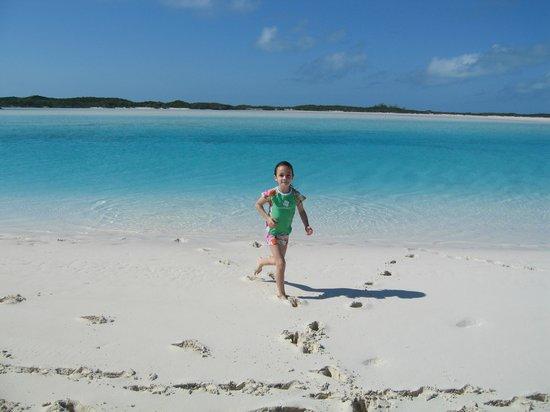 Staniel Cay Yacht Club: Sandbar