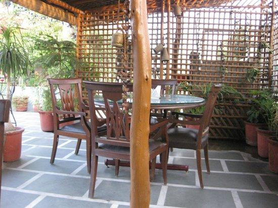 Hotel Hari Piorko:                   Rooftop Dining