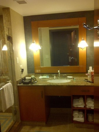 Seneca Niagara Resort & Casino:                   Decent size bathroom