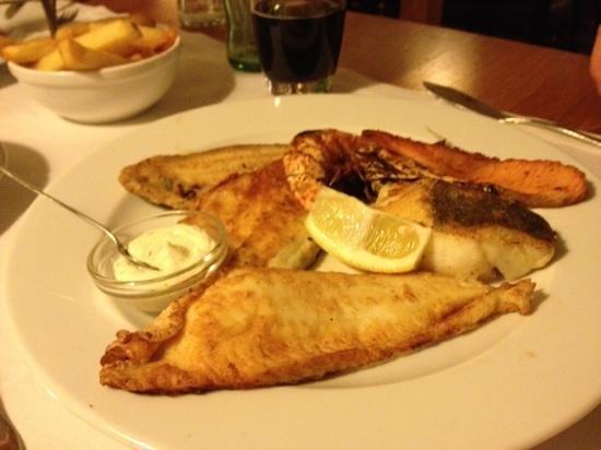 De Meerplaats :                   6 soorten vis