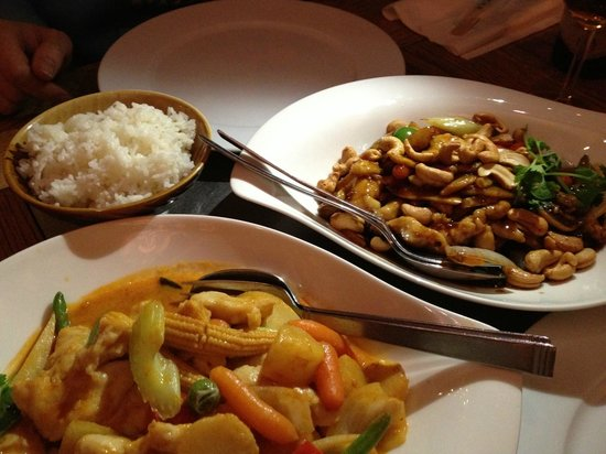 Mr. Tang: Fuji House_Chicken Gong Bao and Chicken Curry