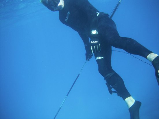 Spearfishing Today:                   Leo