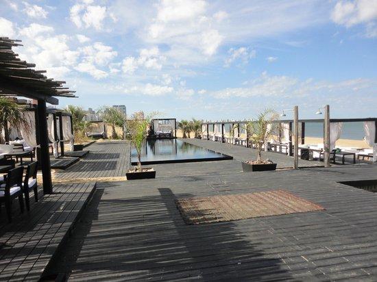 Serena Hotel Punta del Este: vista da piscina , do restaurante