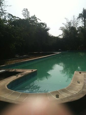 Suleima Lodge:                   The huge swimmingpool