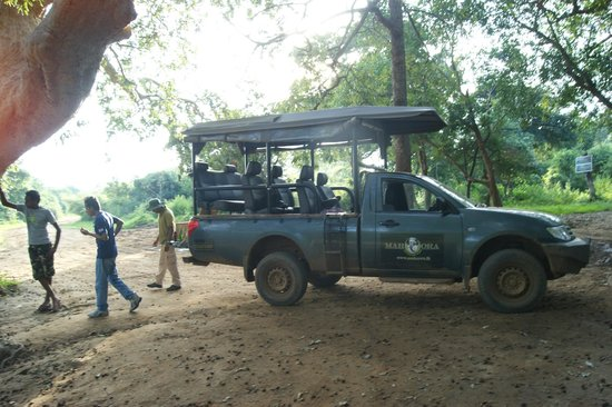 Mahoora Tented Safari Camp Yala:                                     Safari