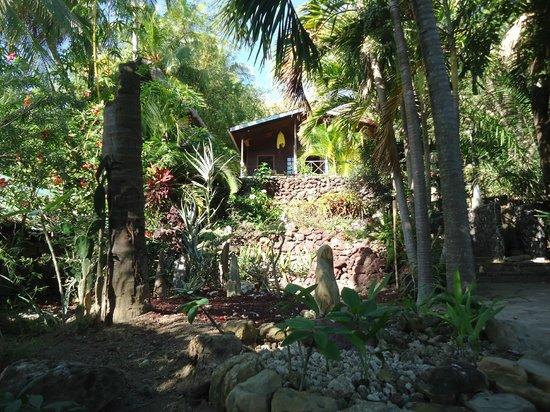Hotel Selva Azul: Bali
