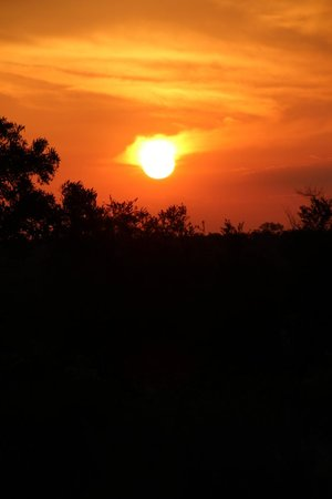 Tanda Tula Safari Camp :                   Sunset